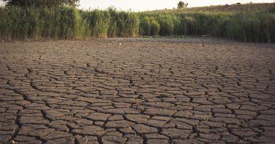 02.08.2018 Pressemitteilung: Tönnies, Campina und das Klima