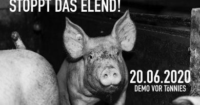 20.06.2020 12 bis 14 Uhr Mahnwache bei Tönnies, Rheda-Wiedenbrück